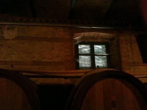 Giuseppe_Rinaldi_Cobweb_Window.JPG